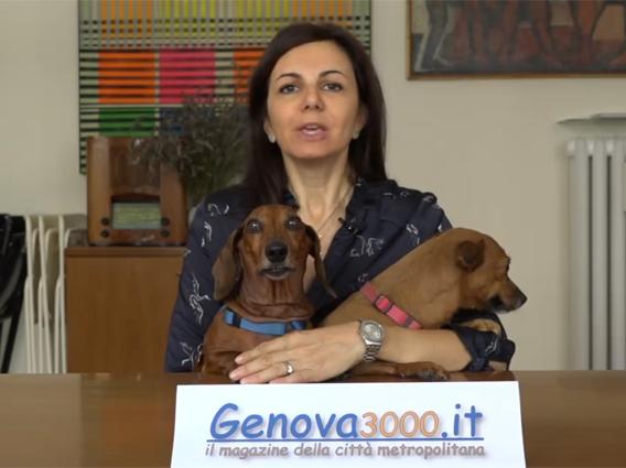 Genova3000 Pet